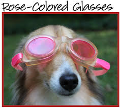rose coloured glasses